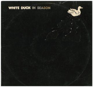 whiteDuck-inSeason