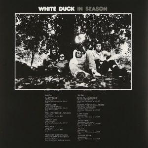 whiteDuckInSeasonBack